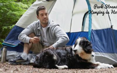 Kempingezés kutyával: életünk legszebb kirándulása